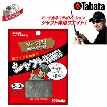 タバタ Tabata シャフト専用鉛 5g GV-0626