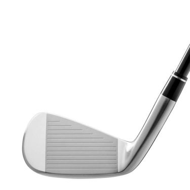 本間ゴルフ ツアーワールド TR20 P メンズ アイアン 6本セット(#6~11) N.S.PRO 950GH neo スチールシャフト 2020年モデル 商品詳細5